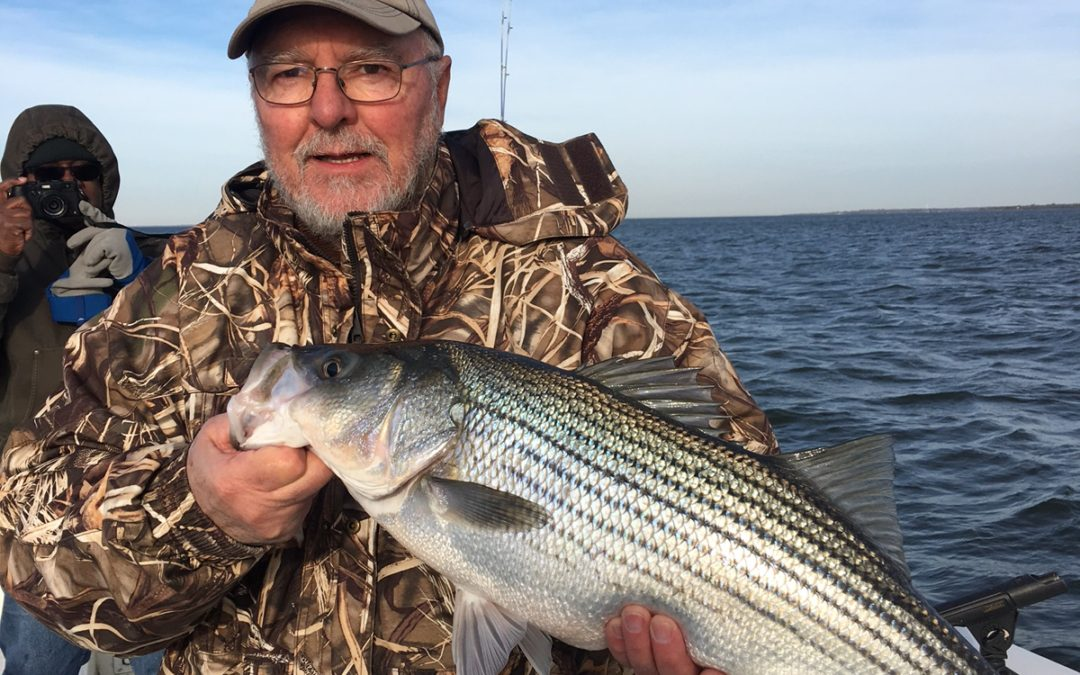 Lake Texoma Winter Striper Action